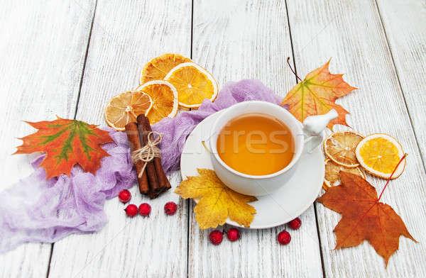 Hot thee specerijen beker vallen bladeren Stockfoto © almaje