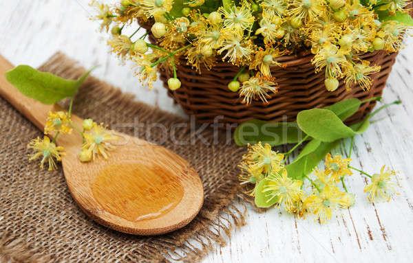 Wiklina koszyka wapno kwiaty starych Zdjęcia stock © almaje