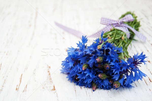 Stock photo: blue cornflowers
