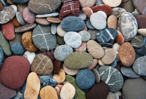 Deniz doğa dizayn arka plan yaz Stok fotoğraf © almaje