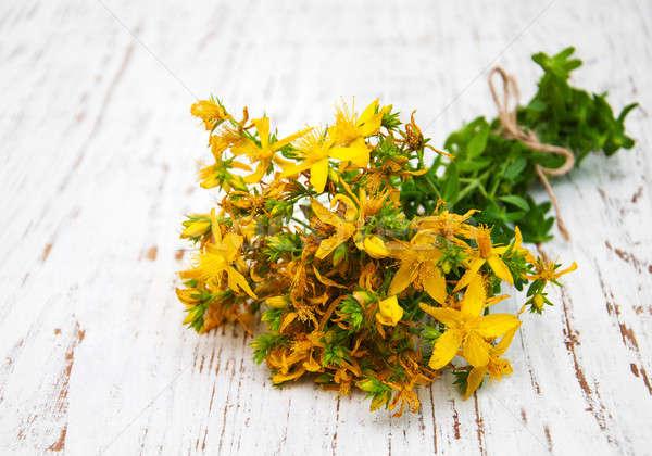 цветы старые древесины здоровья красоту Сток-фото © almaje