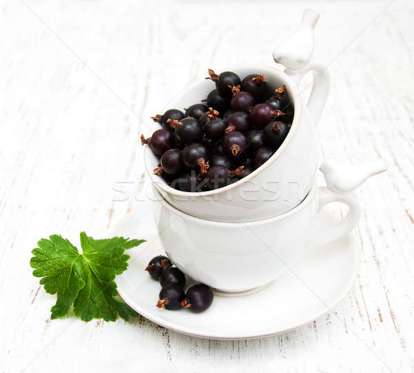 black currant Stock photo © almaje