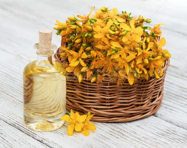 şişe ahşap masa çiçek yaz yeşil tıp Stok fotoğraf © almaje