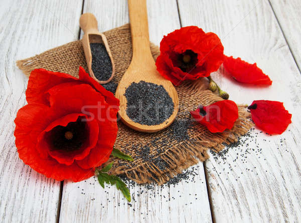Poppy seeds and flowers Stock photo © almaje