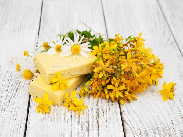 Tratamento camomila sabão feito à mão médico Foto stock © almaje