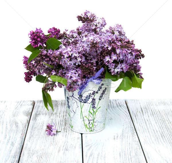 Lila flores edad naturaleza fondo Foto stock © almaje