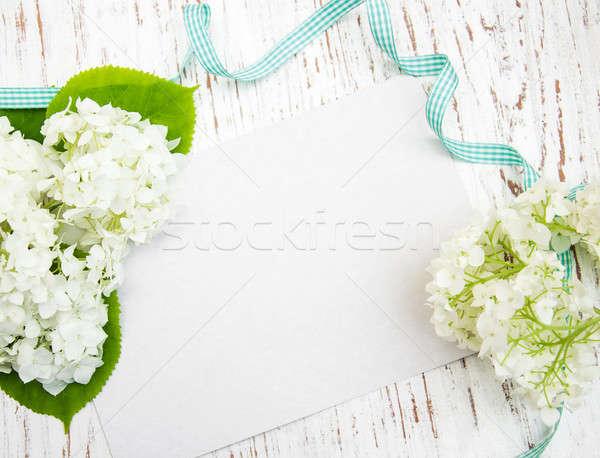 white hydrangea with card Stock photo © almaje