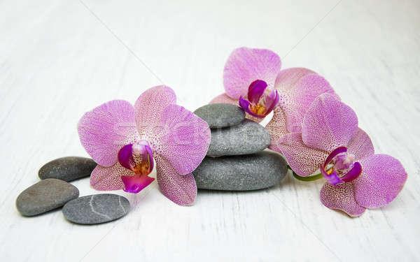 Stockfoto: Orchideeën · massage · stenen · houten · bloem · abstract