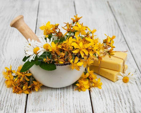 Flores sabão flor beleza cuidar Foto stock © almaje