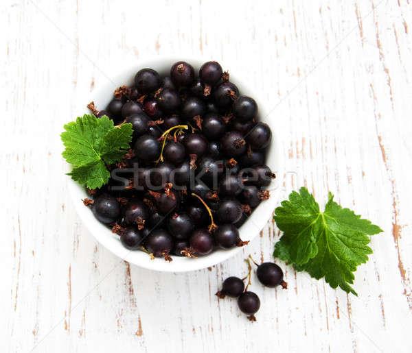 black currant Stock photo © almaje