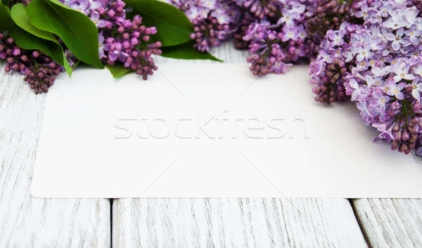 Liliowy kwiaty pusty karty starych Zdjęcia stock © almaje