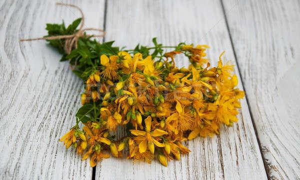 Tabela flores velho mesa de madeira flor médico Foto stock © almaje
