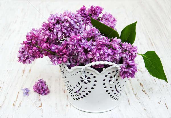 Orgona virágok öreg fából készült természet háttér Stock fotó © almaje