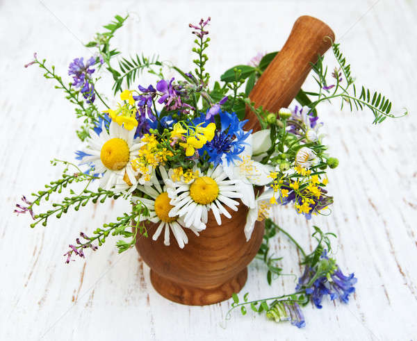 wildflowers with mortar and pestle Stock photo © almaje