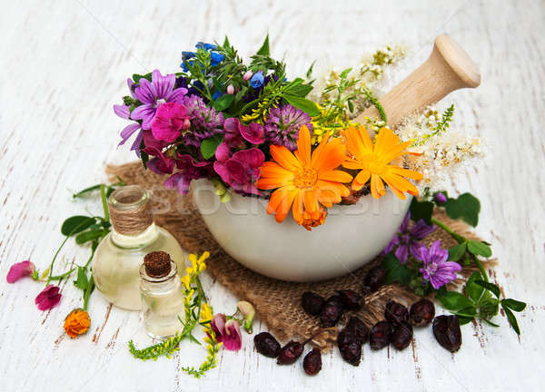 wild flower and herb leaf in mortar Stock photo © almaje