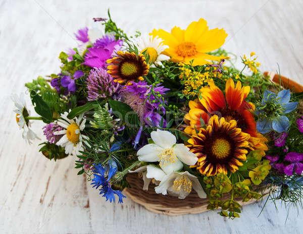 Flores silvestres velho flores folha jardim Foto stock © almaje