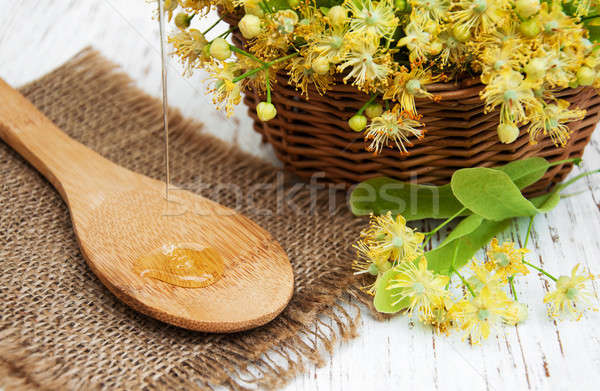 Linden flowers Stock photo © almaje