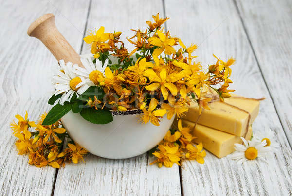 Tutsan flowers  and mortar with soap Stock photo © almaje