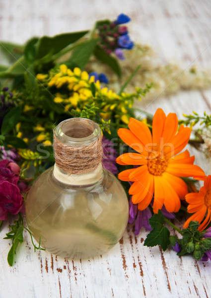 Vadvirág olaj természetes gyógynövény levél fából készült Stock fotó © almaje