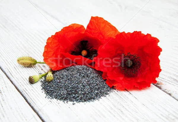Poppy seeds and flowers Stock photo © almaje