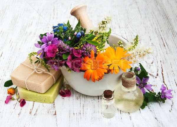 Vadvirág gyógynövény levél fehér szappan egészséges Stock fotó © almaje