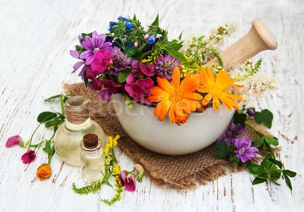 Erva folha branco sabão saudável Foto stock © almaje