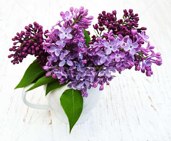 сирень цветы старые природы фон Сток-фото © almaje