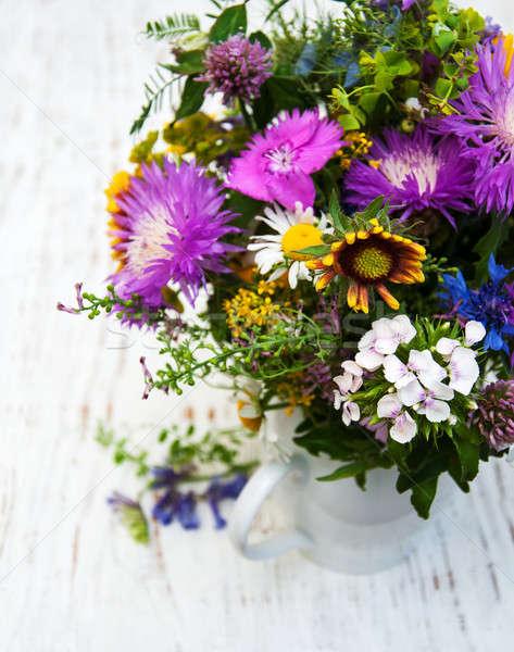 Flores silvestres edad flores naturaleza jardín Foto stock © almaje