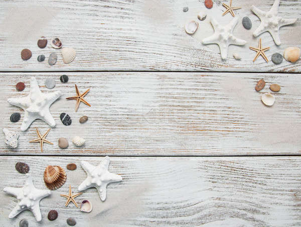 Schelpen zeester grens zomer zand strand Stockfoto © almaje