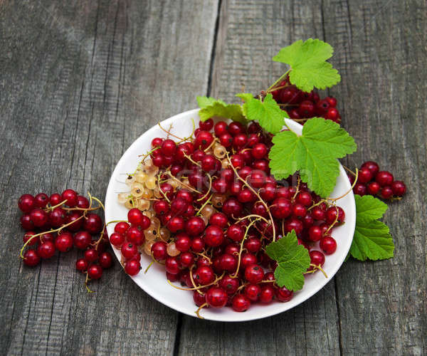 Plate with red currant Stock photo © almaje