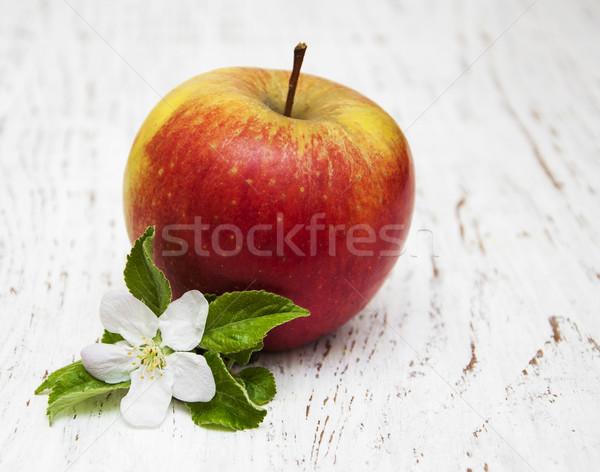 Elma elma ağacı ahşap gıda yaprak Stok fotoğraf © almaje