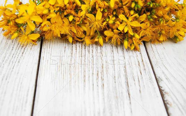 Mesa flores edad mesa de madera naturaleza jardín Foto stock © almaje