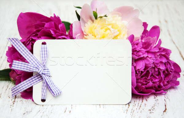Peony with card Stock photo © almaje