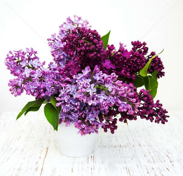 Сток-фото: сирень · цветы · старые · природы · фон