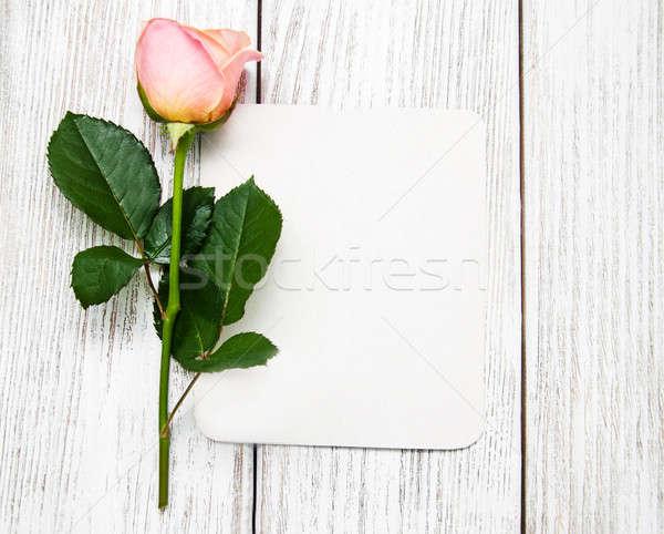 Pink rose and greeting card Stock photo © almaje