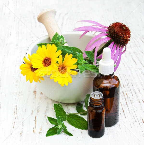 Médicos flores flor naturaleza salud fondo Foto stock © almaje