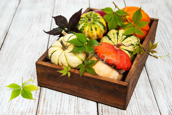 Box with pumpkins Stock photo © almaje