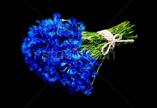 Stock photo: bouquet of blue cornflowers