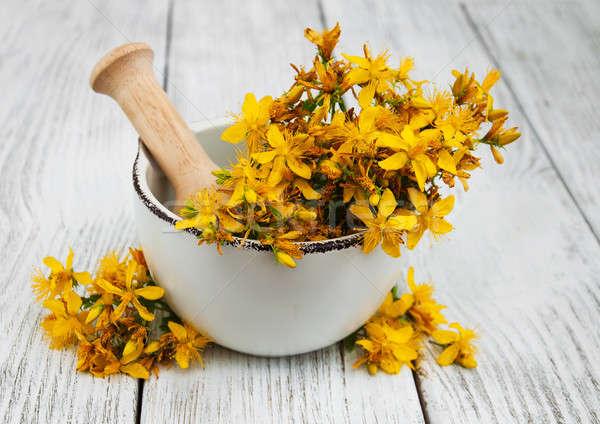 Houten tafel medische natuur tuin zomer geneeskunde Stockfoto © almaje