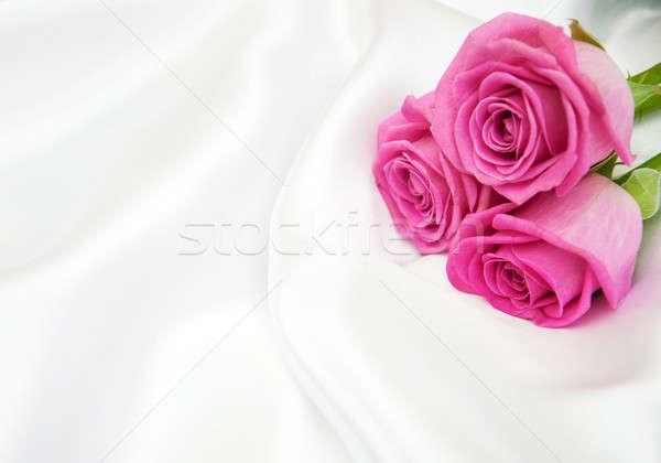 Rozen witte zijde roze bloem bloemen Stockfoto © almaje