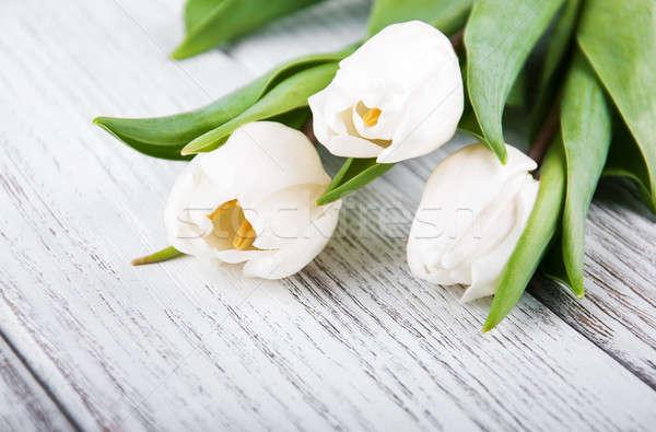 Primavera naturaleza jardín belleza verde planta Foto stock © almaje