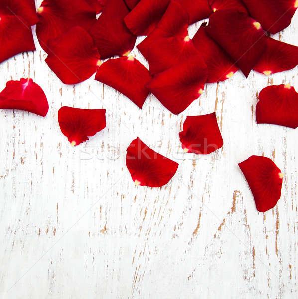 Rode rozen bloemblaadjes oude houten bloem natuur Stockfoto © almaje