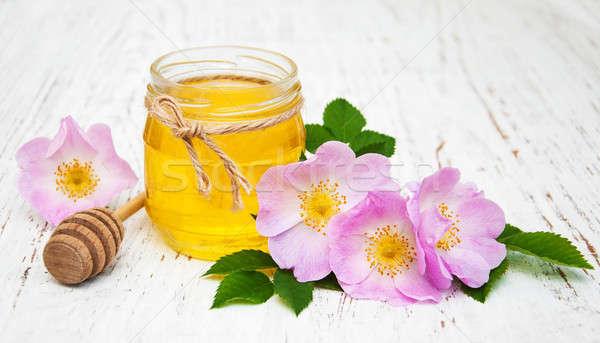 Honey and dog rose flowers Stock photo © almaje