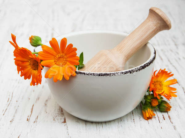 flower of calendula officinalis in mortar Stock photo © almaje