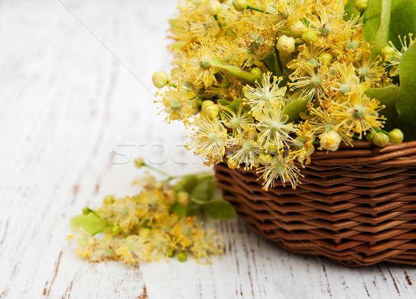 Osier panier chaux fleurs vieux bois Photo stock © almaje
