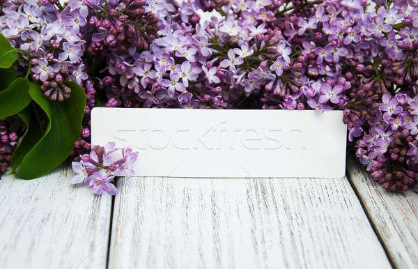 сирень цветы пусто тег старые Сток-фото © almaje