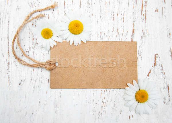 Camomille fleurs vintage tag bois fleur Photo stock © almaje