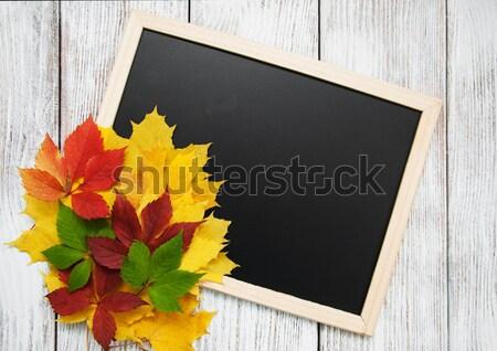 Hojas de otoño pizarra marco caída colorido hojas Foto stock © almaje