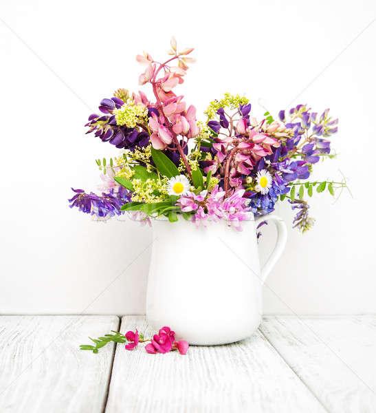 Vaso ancora vita rosa viola natura foglia Foto d'archivio © almaje