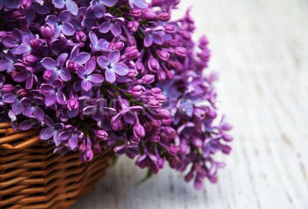 Orgona virágok öreg fából készült virág fa Stock fotó © almaje